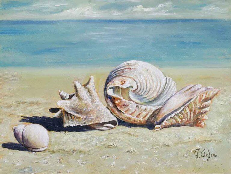 """Seashells on the sand """"39"""""""